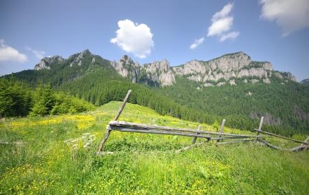 Carpathian mountain landscape in summer, Romania photo