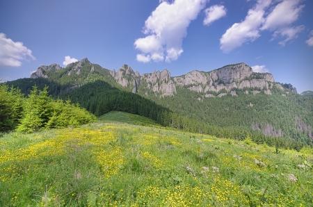 Ceahlau mountain landscape in summer, Romanian Carpathians photo