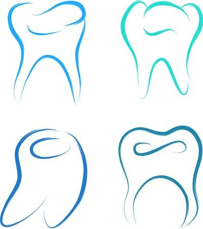 teeth set healthy vector illustration sketch