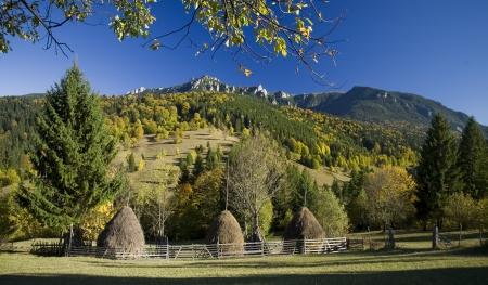 carpathian mountains: autumn rural mountain landscape in Romania