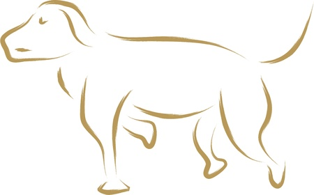 dog sketch, hand drawn illustration Vector