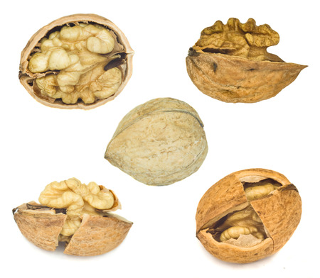 hard core: collection of walnuts over white background