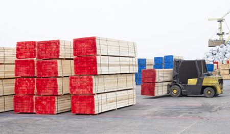 lumber industry: timber wood piles deposit for export