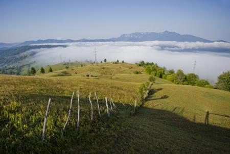 Summer landscape in Romania  photo