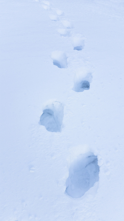dint: foot steps in big snow