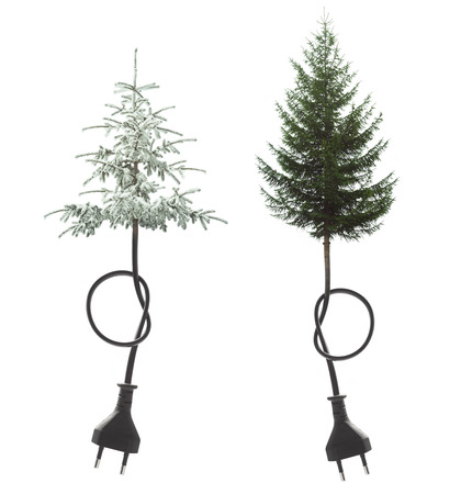 pine tree plugged in concept