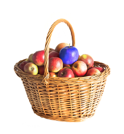 basket with red apples and genetic modified blue one isolated on white