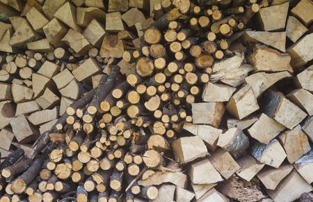 texture of pile wood for fire Stockfoto