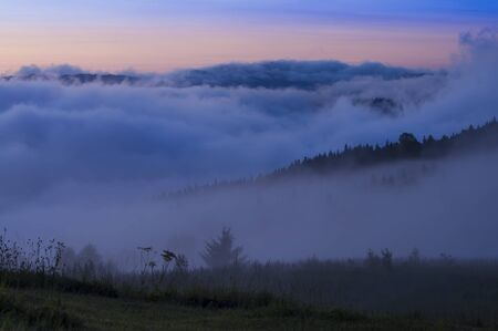 sea of clouds in the forest, Romania Stok Fotoğraf