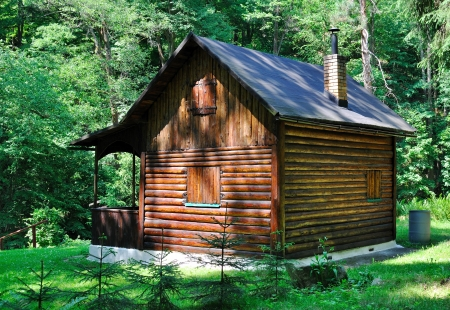 Cabin in the woods Stock Photo - 17401860
