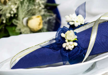 serviettes: blue-white serviettes with serviette holder