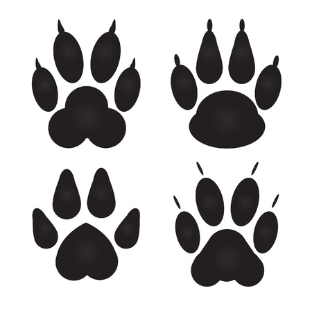 cat paw: Different cat, dog Paw Prints