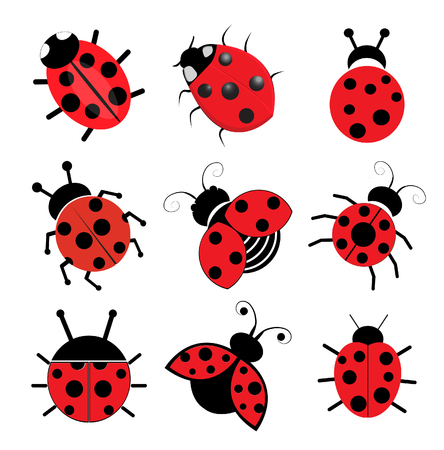 ladybug cartoon: Mariquitas Vectores