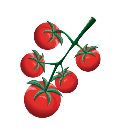 small group of objects: Cherry tomatoes Illustration