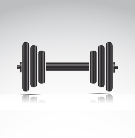 steel bar: dumbbell weights