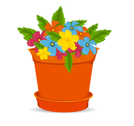pot: Pot With  Flowers, Isolated On White Background