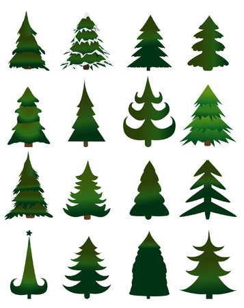 pine green: Set of Christmas trees vector Illustration