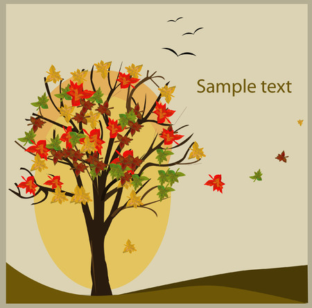 portadas de libros: Fondo decorativo del otoño Vectores