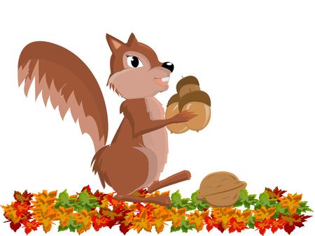 chipmunk: llustration of funny cute Chipmunk with peanut Illustration