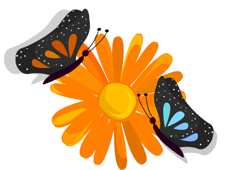 womanish: butterfly on a flower background Illustration