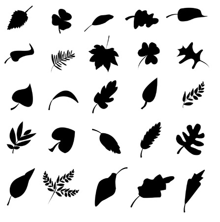 nettle: leaf icons set. Nature & ecology image.