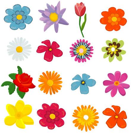 daisywheel: set of flower graphics vector Illustration