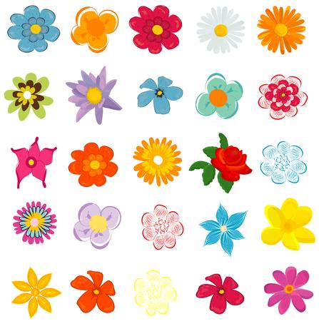 Colorati fiori primaverili illustrazione vettoriale Archivio Fotografico - 46269033