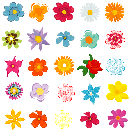 spring season: colorful spring flowers vector illustration