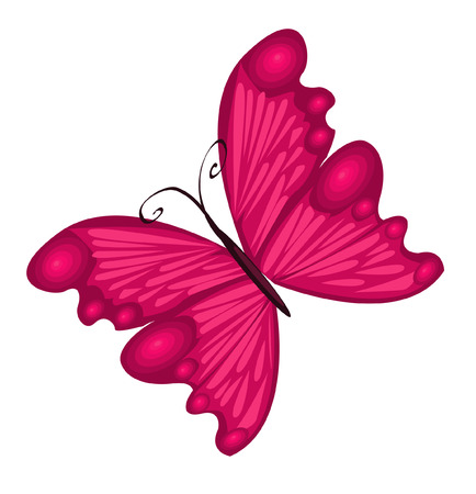 brightly: Vector Illustration of detailed Brightly coloured butterfly.