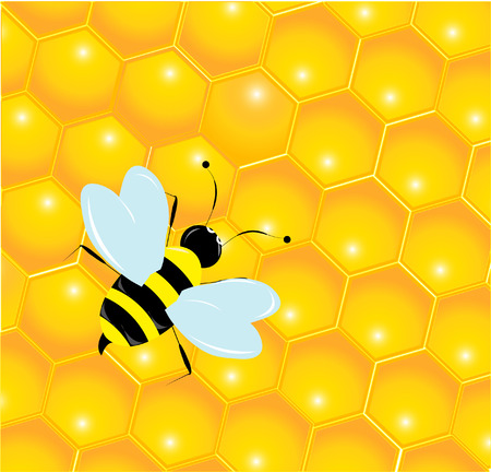 fructose: Bees and honeycombs