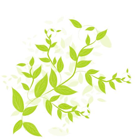 leafy: Green leafy background
