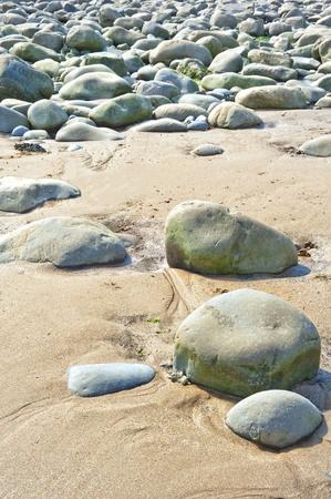 stoney: stoney landscape with sand  Stock Photo