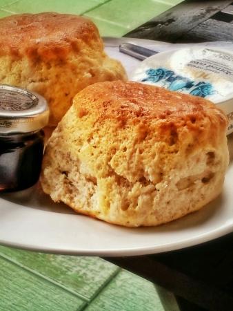 scones: Delicious scones with jam and cream