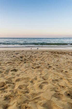 砂海とサーフィンと日没時に浜シーサイド