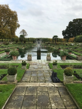Beautiful water garden with walkway leading to the fountain