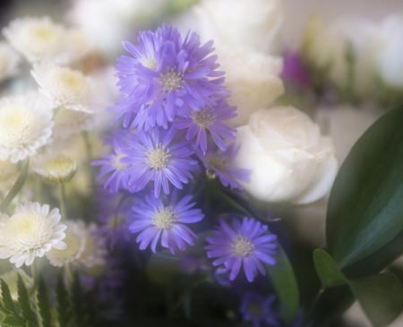Double Exposure of Romantic Flowers