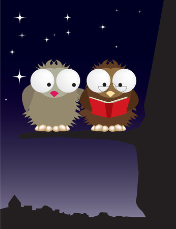 Owls at night, couple in love Illustration