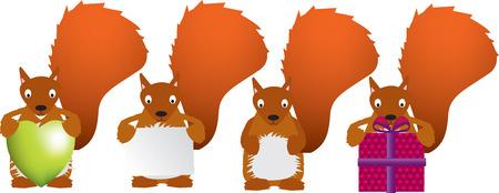 bushy: Squirrel