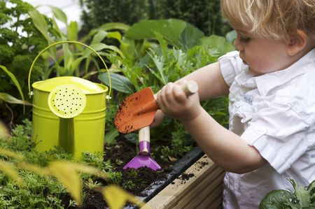 watering: a 2 year old toddler gardening with watering can