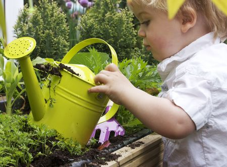a 2 year old toddler gardening with watering can photo
