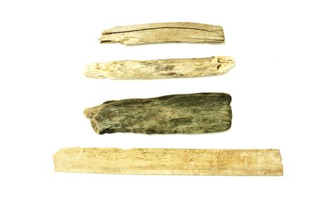 driftwood: chunks of different parts of beach drift wood