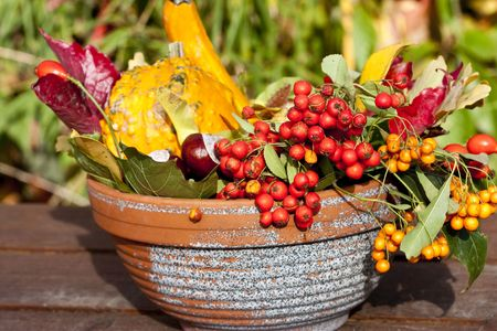 yellows: autumn still life arrangement yellows and browns Stock Photo