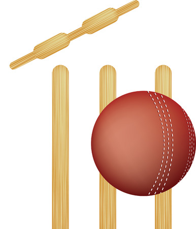 knock out: simple icon style illustration of cricket stumps and ball