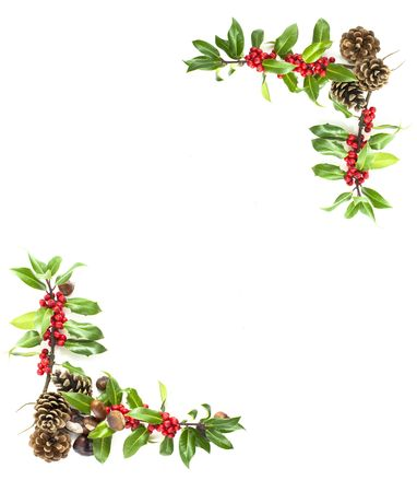 corner border: christmas winter holly and red berries frame