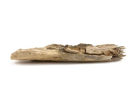 driftwood: Macro close up of a piece of driftwood found on the beach in suffolk, uk