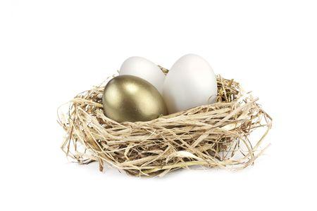 golden egg growing amongst normal white eggs photo