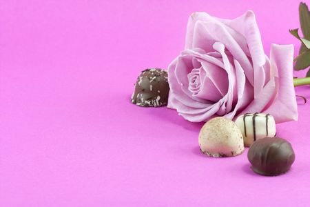 pink rose and chocolate background in pink Stock Photo - 6768756
