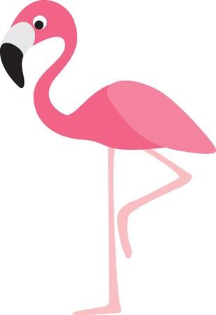 flamenco ave: personaje de dibujos animados de Flamingo color moderna sobre fondo blanco  Vectores