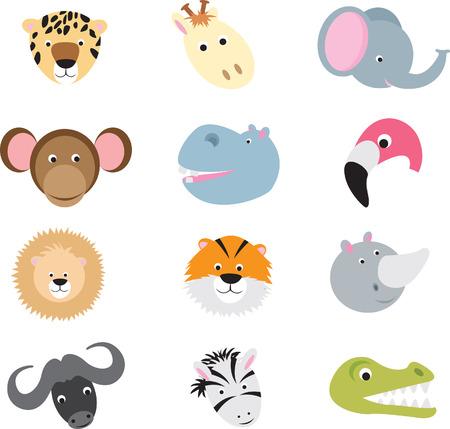 jirafa caricatura: colecci�n de lindos rostros de animales silvestres como dibujos animados sobre un fondo blanco  Vectores