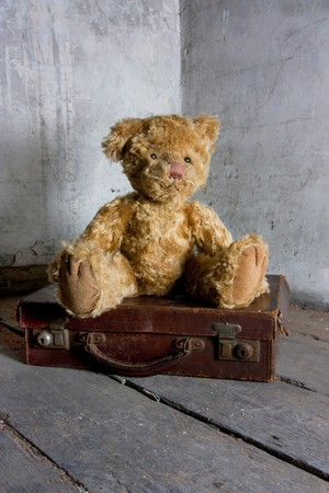 attic: teddy bear waiting on a suitcase to be discovered